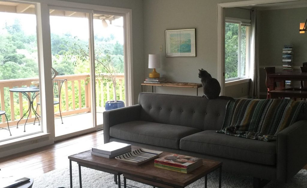 Our Cat Takes To The Andre Sofa From Room And Board. Background: CB2 Lamp,  Anthropologie Console, Beach Photo From Easy, Book Tower From Wayfair  (similar To ...